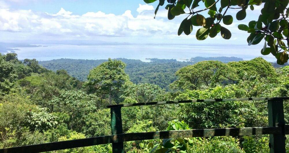 Suriname Blog Brownsberg uitzicht