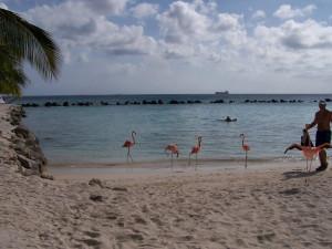 1 Antillen huwelijksreizen